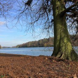 Lake at Clumber Park, Nottinghamshire