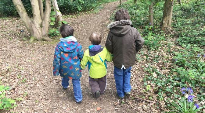 My three boys walking through woodland
