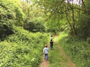 Boys running through woodland