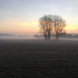 Sun rise over fields