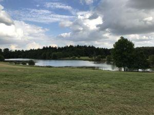 Overlooking a lake