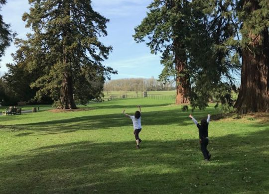 Boys running through parkland