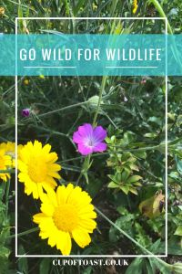 Go Wild For Wildlife Cup of Toast