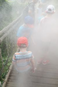 In the cloud at the Eden Project