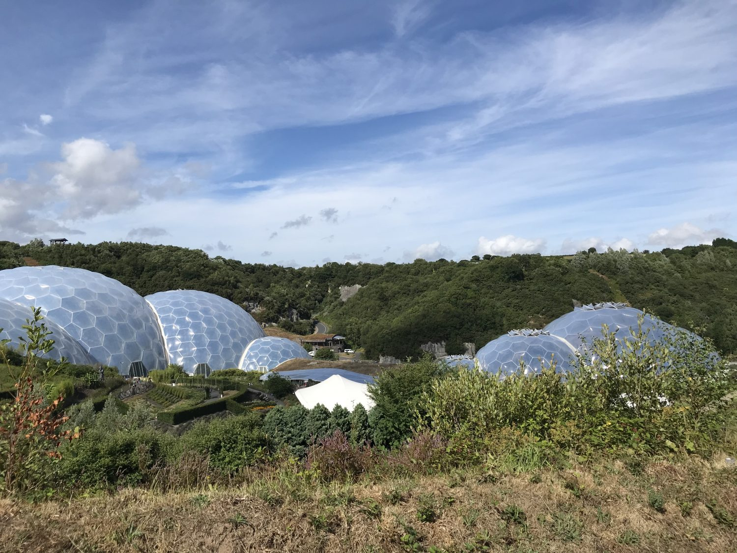 View across to the Biomes