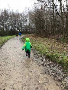 New Year's Day walk 2018