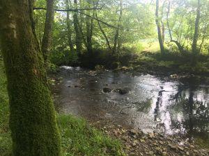 Glenbranter
