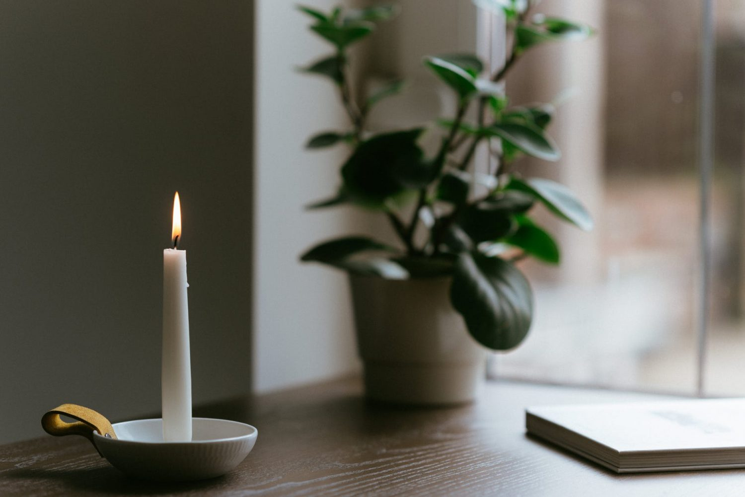 burning candle near potted plant on table